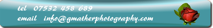 wedding photographers nottingham